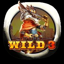 The Wild 3 slots