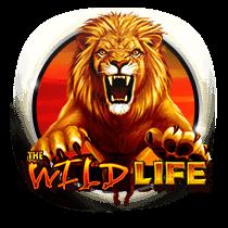 The Wild Life slots